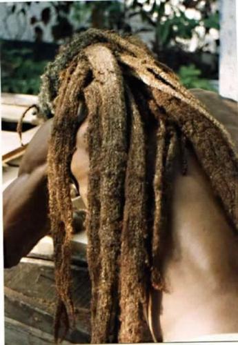 23-long-dirty-blonde-rastafarian-dreadlocks